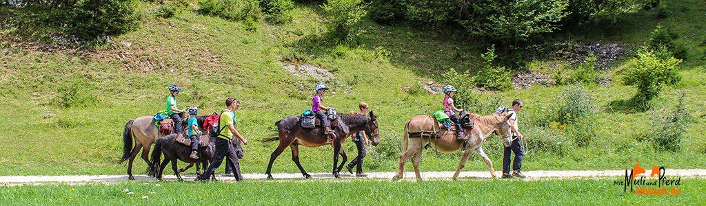 2-Tage-Trekkingtour mit Maultieren und Pferden