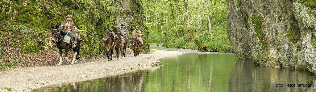längere Wanderritte Wald Wacholder Wasser